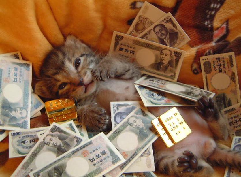 猫 お金持ち
