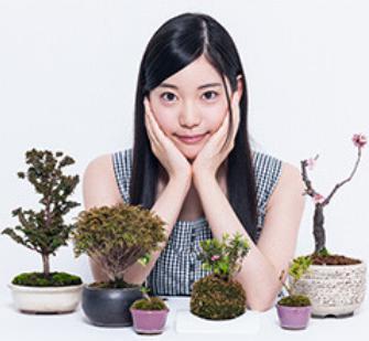 竹俣紅 ミニ盆栽